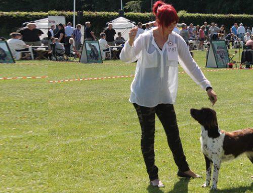 Barn og hund konkurrence til jubilæumsudstilling den 29. juni