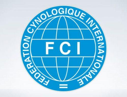 Forslag til ændringer i KLM-I's vedtægter og FCI standarden